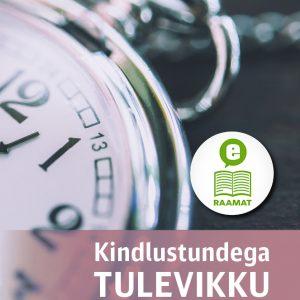 E-raamat: Kindlustundega Tulevikku, Mark A. Finley