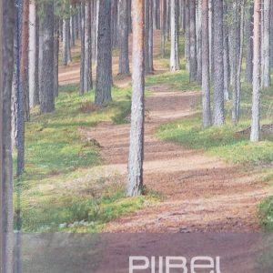 Piibel (väike, Kõva Köide 2013)