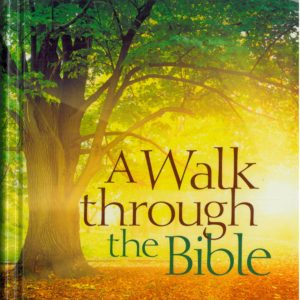 A Walk Through The Bible, Anna Galeniece